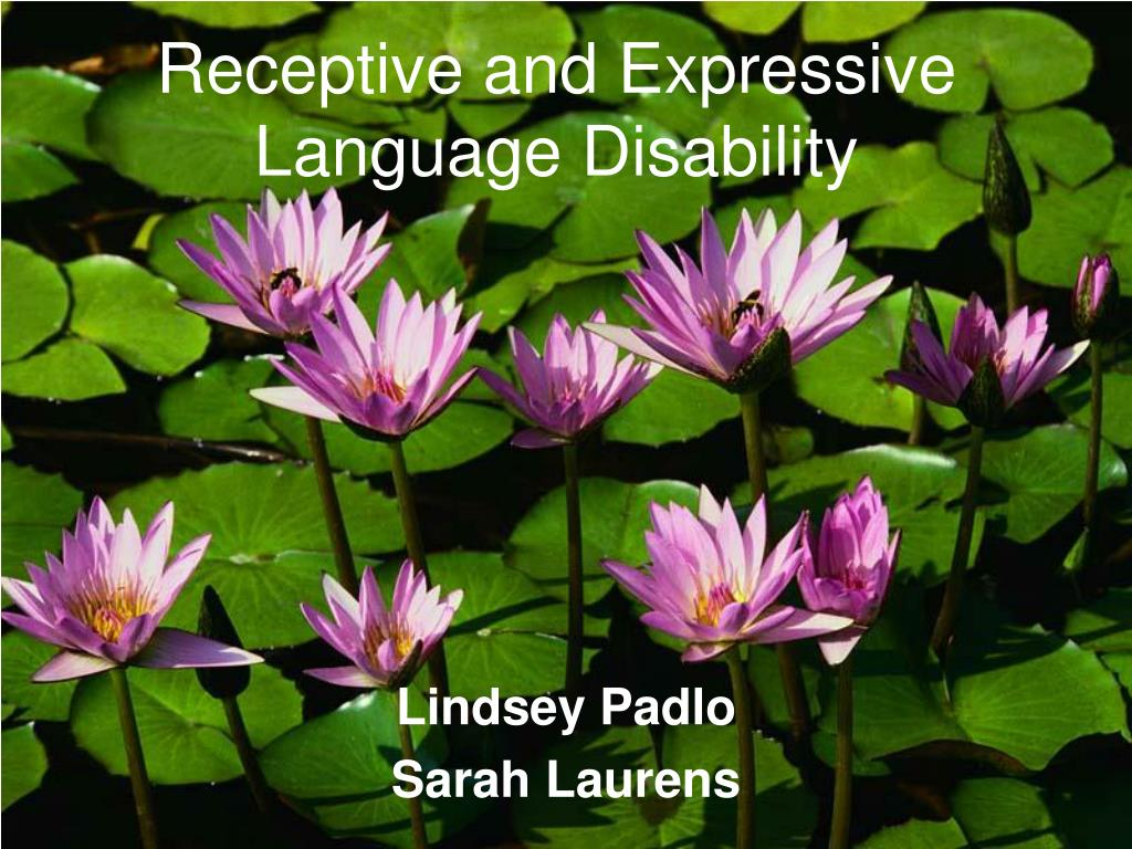 receptive and expressive language disability l.