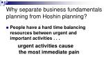 why separate business fundamentals planning from hoshin planning