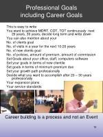 professional goals including career goals