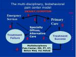 the multi disciplinary biobehavioral pain center model