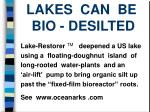 lakes can be bio desilted