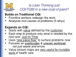 is lean thinking just cqi tqm in a new coat of paint