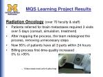mqs learning project results