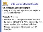 mqs learning project results52