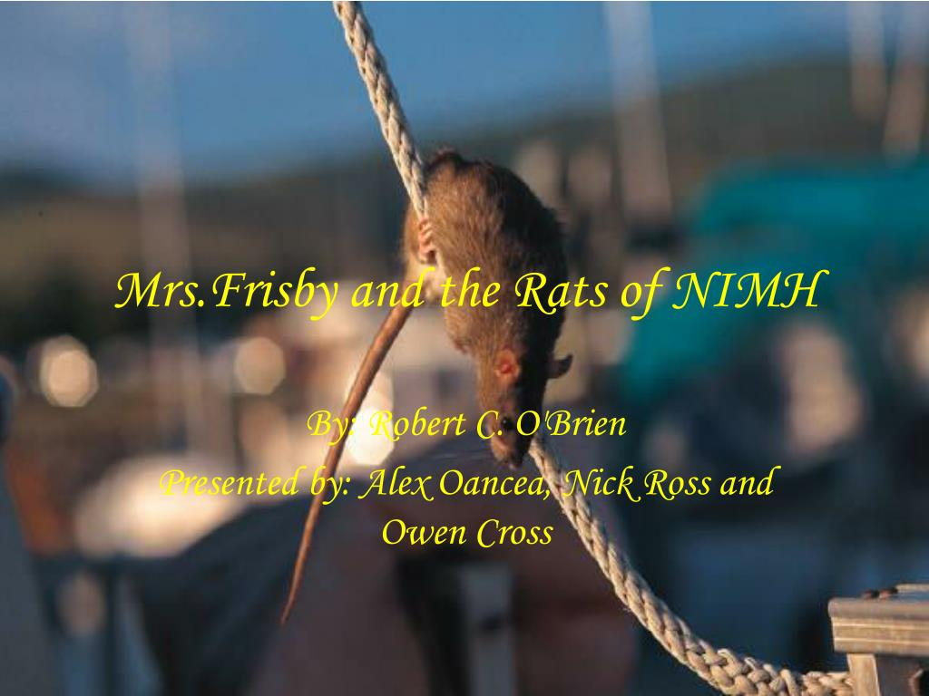 mrs frisby and the rats of nimh l.
