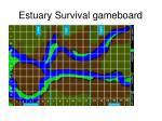 estuary survival gameboard