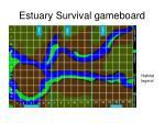 estuary survival gameboard10