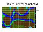 estuary survival gameboard8