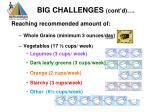 big challenges cont d