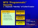 mts programmatic security