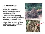 soil interface