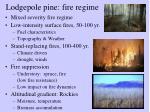 lodgepole pine fire regime