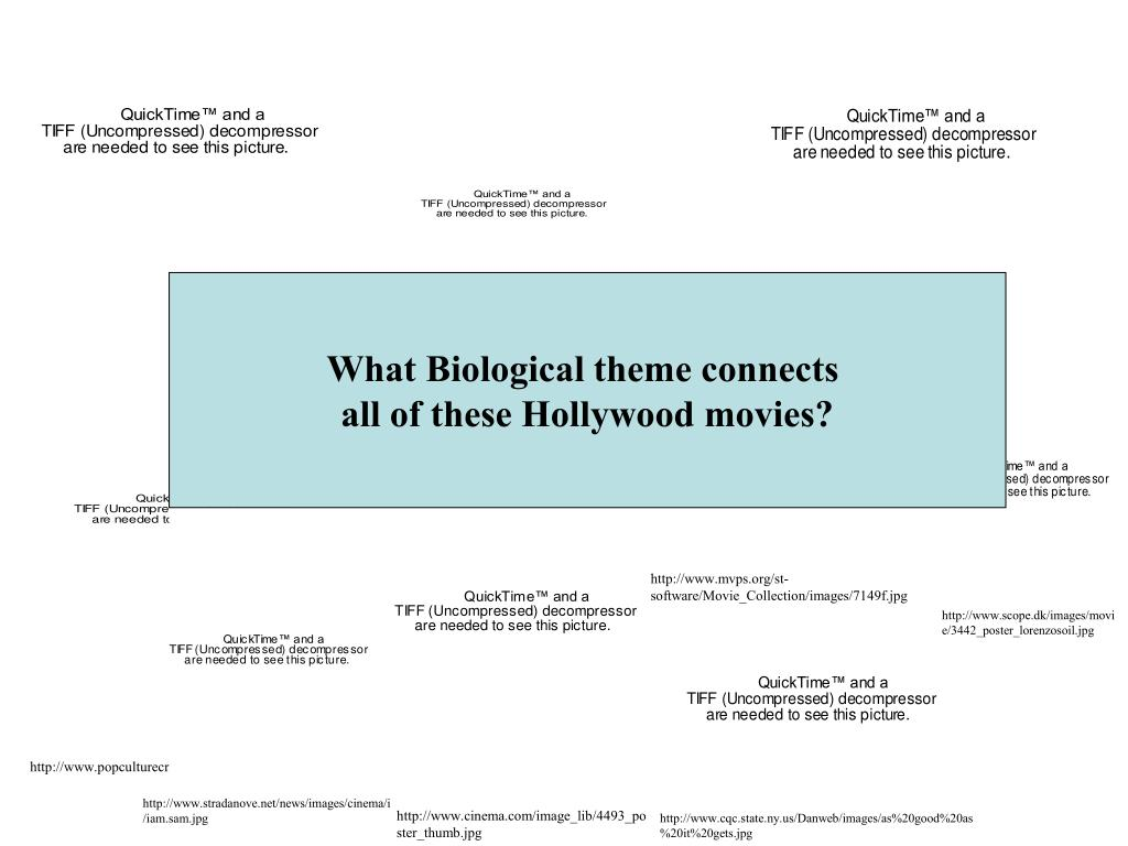 hollywood movie slide l.