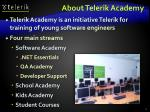about telerik academy