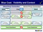 blue coat visibility and context
