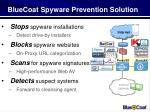 bluecoat spyware prevention solution