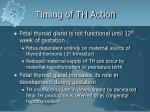 timing of th action