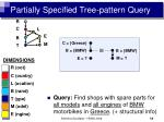 partially specified tree pattern query