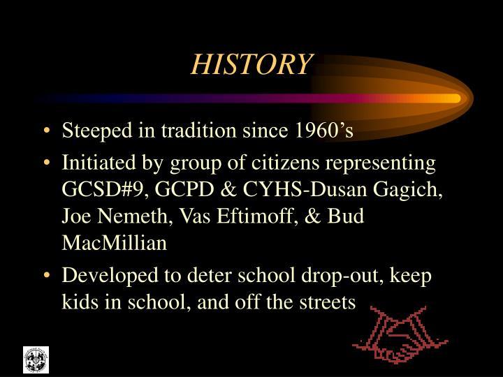 history n.