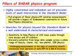 pillars of babar physics program