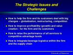 the strategic issues and challenges