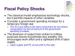 fiscal policy shocks