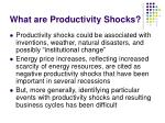 what are productivity shocks