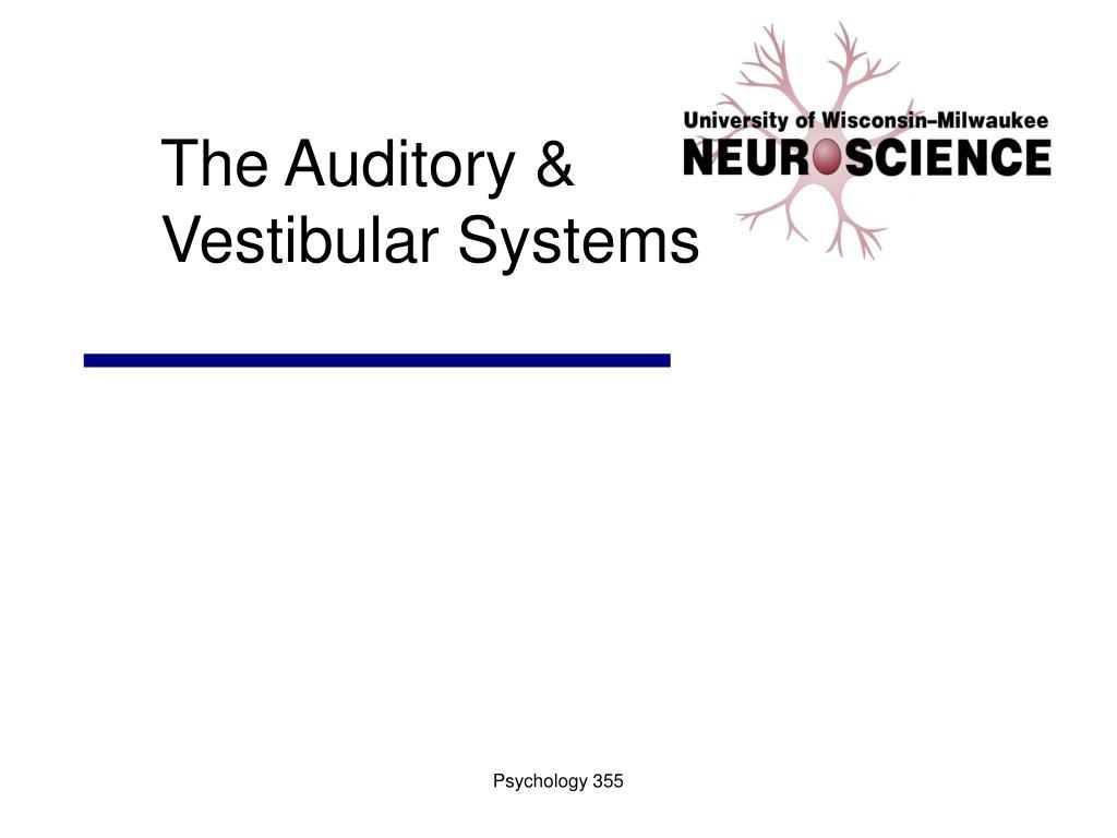the auditory vestibular systems l.