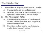the middle ear9