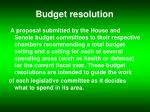 budget resolution