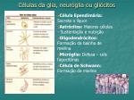 c lulas da glia neur glia ou gli citos