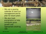 managed grazing