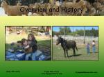 overview and history4