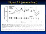 figure 5 8 volume load