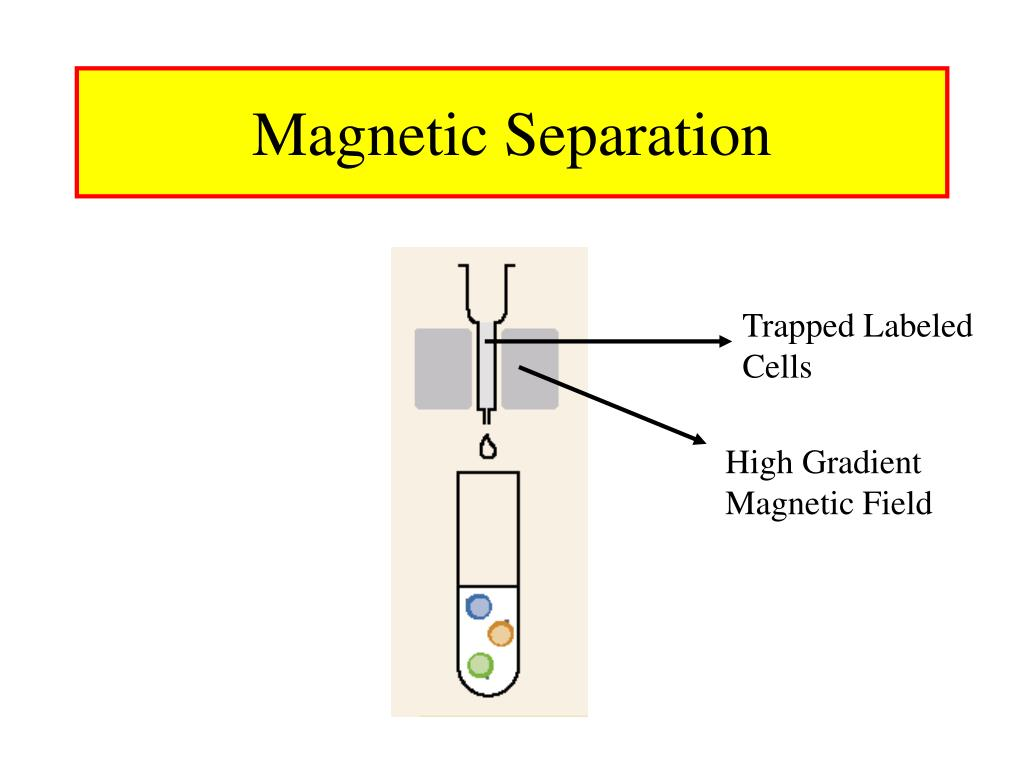 Trapped Labeled Cells