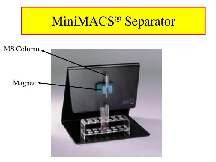 MiniMACS