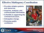 effective multiagency coordination