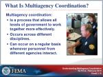 what is multiagency coordination