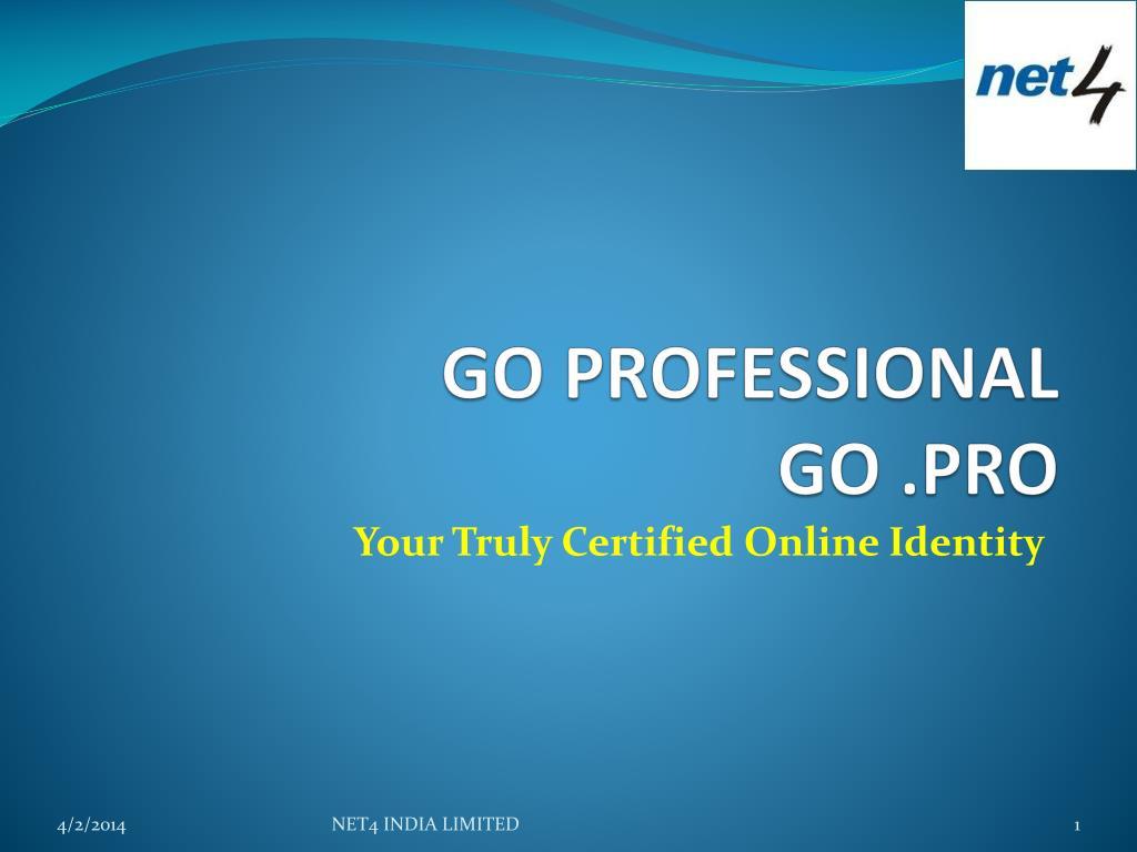 go professional go pro l.