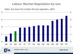 labour market regulation by law
