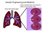 genetic engineering and medicine