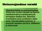 metsamajanduse vormid24