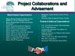 project collaborations and advisement