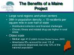 the benefits of a maine project