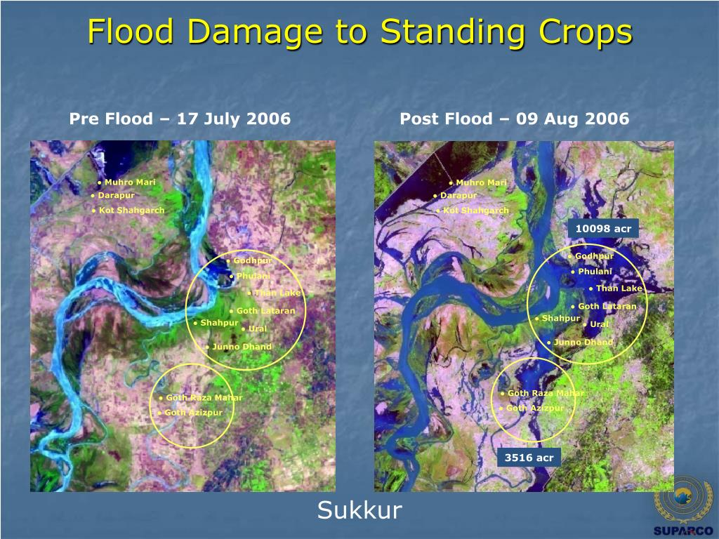 Flood Damage to Standing Crops