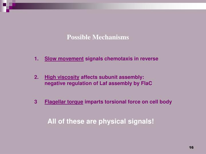 Possible Mechanisms