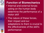 function of biomechanics