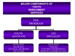 major components of youth enrichment services