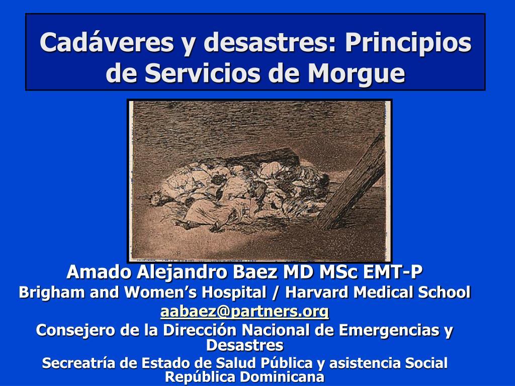 cad veres y desastres principios de servicios de morgue l.