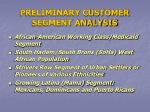 preliminary customer segment analysis